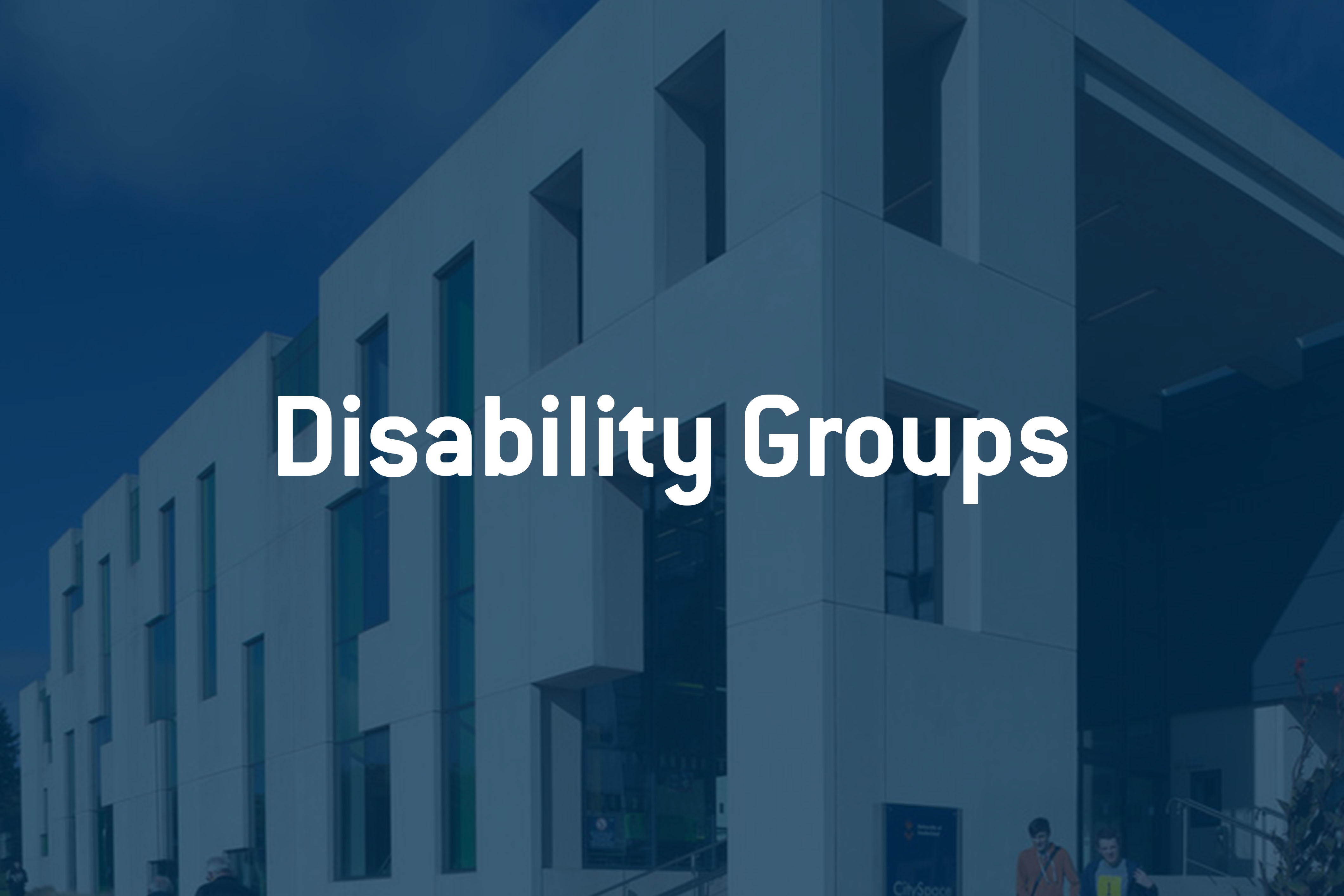 Disability groups image
