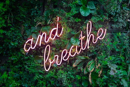 Neon sign saying and breathe with plants in background